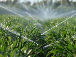 Beyşehir tarımsal sulama suyuna kavuşuyor
