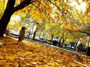 Konyadan sonbahar manzaraları