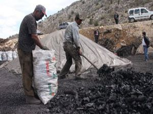 Türkiye mangalının yüzde 10u Konyadan
