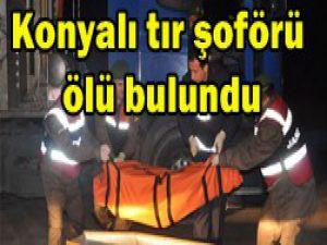 Konya plakalı tırın şoförü ölü bulundu