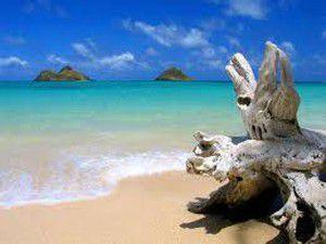 Hüyüke plaj ve mesire alanı