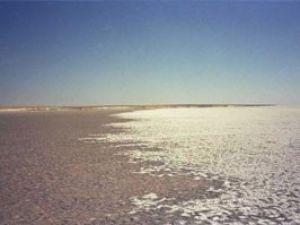 Tuz hasadı sona erdi