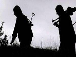 Bingölde 8 terörist öldürüldü