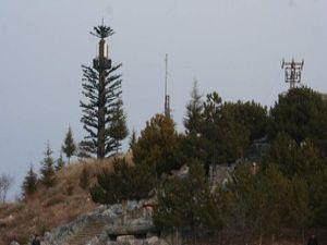 Beyşehirde baz istasyonlarına ağaç kamuflajı