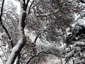 Konyaya kar geliyor