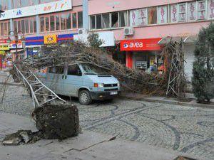 Akşehirde şiddetli lodos