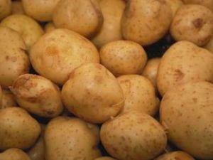 Konya patatesde marka olma yolunda