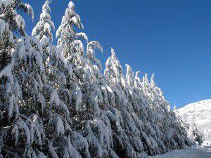 Hadimde kar yağışı