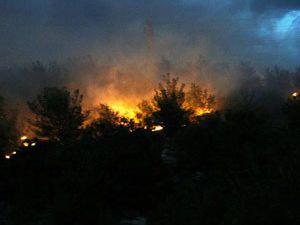 Rüzgar elektrik tellerini koparınca yangın başladı