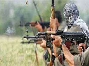PKK suçüstü yakalandı