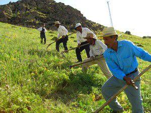 Çiftçiye eğitim
