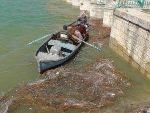 Beyşehir Gölünde bahar temizliği