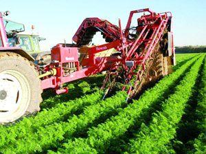 Suudiler Türk tarımına 3 milyar dolar yatıracak