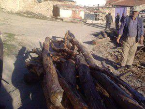 Köy yolunu ağaç gövdeleriyle kapattı
