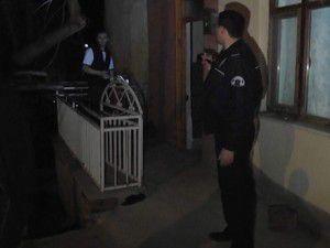 Beyşehirde polis hırsız avında