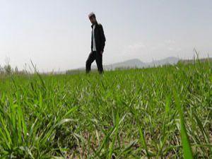 Beyşehirde çiftçiler yağış bekliyor