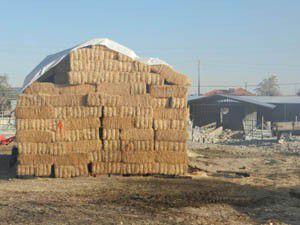 Emirgazide saman fiyatları tavan yaptı