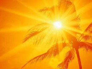 Son yılların en sıcak günü