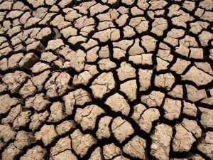 Emirgazi ve çevresinde kuraklık