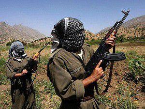 PKK, Licede 10 köylüyü kaçırdı