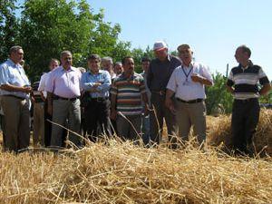 Çiftçilere, anıza direk ekim yöntemi anlatıldı