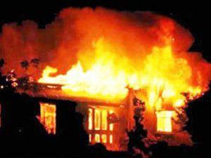 Yılanlar basan evini yaktı