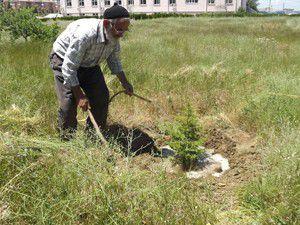 Ağaç sevgisi ile gençlere örnek oluyor
