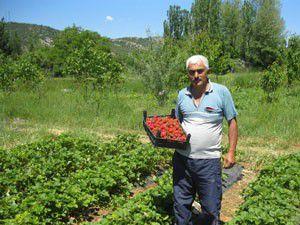 Hüyükte organik tarım mercek altında