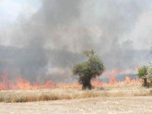 Karapınarda ot yangını