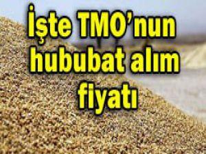 TMOnun hububat alım fiyatı açıklandı