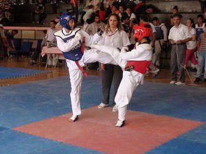 Akşehir tekvando turnuvası sona erdi