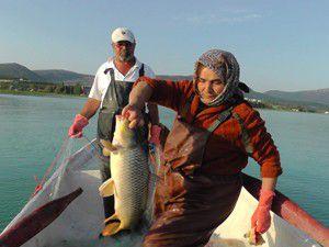 Kadın balıkçılar kürek çekiyor, göle ağ seriyor
