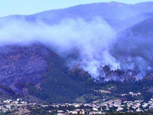 Orman yangınında 346 ev kül oldu
