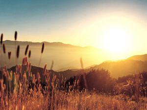 Güne güzel başlamak için..