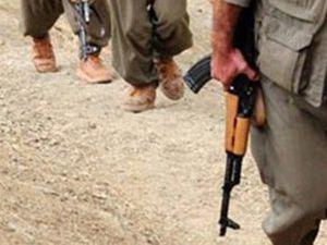 6 PKKlı tesli oldu
