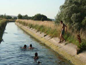 Sulama kanallarında serinliyorlar