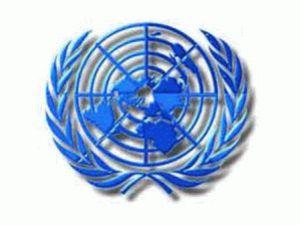 BM İnsan Hakları Temsilcisi Myanmarda
