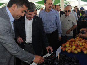 Meramda organik pazar açıldı