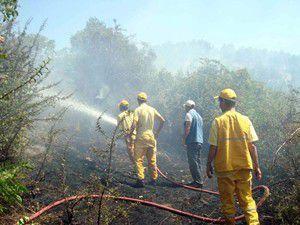 14 ev tamamen yandı