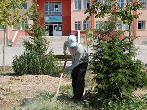 Okul bahçelerinde çevre düzenlemeleri