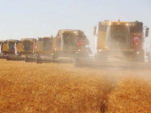 Tahıl üretimi azalacak