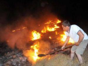 Ormanları İnsan Kaçakçıları Yakıyor!