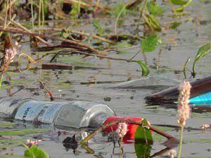 Beyşehir Gölü Milli Parkında çevre temizliği