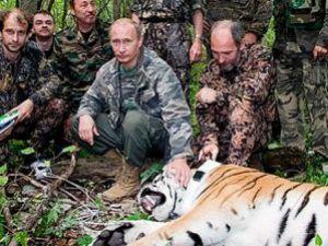 Putinin Kaplan Balonu Patladı!