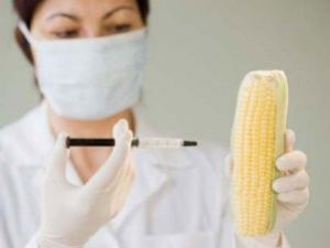 GDOlu Gıdada Kanser Riski