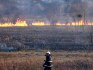 Sıınırdaki Yangın Türkiyeye Sıçradı