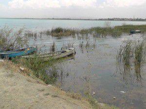 Beyşehir Gölü Milli Parkında hummalı çalışma