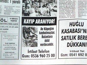 Kayıp av köpeğini gazete ilanıyla arıyor