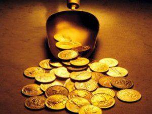 Altın üreten bakteri bulundu