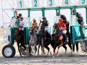 20. Geleneksel Mahalli At Yarışları başladı